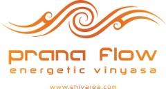 prana flow logo